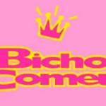 WWW.BICHOCOMEU.COM.BR - MODA INFANTIL FEMININA, ROUPAS, SAPATOS - BICHO COMEU
